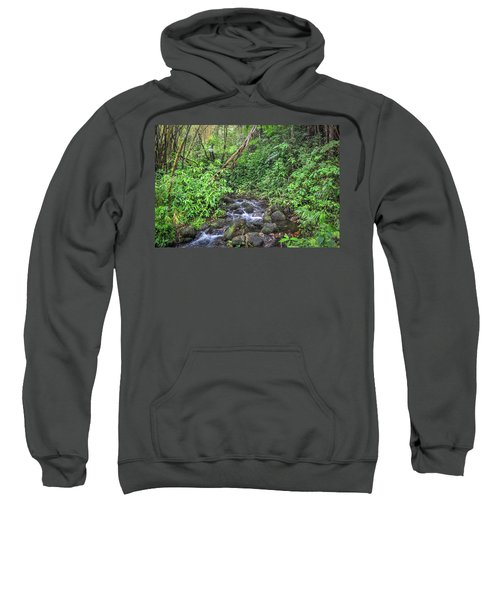 Stream In The Rainforest Sweatshirt