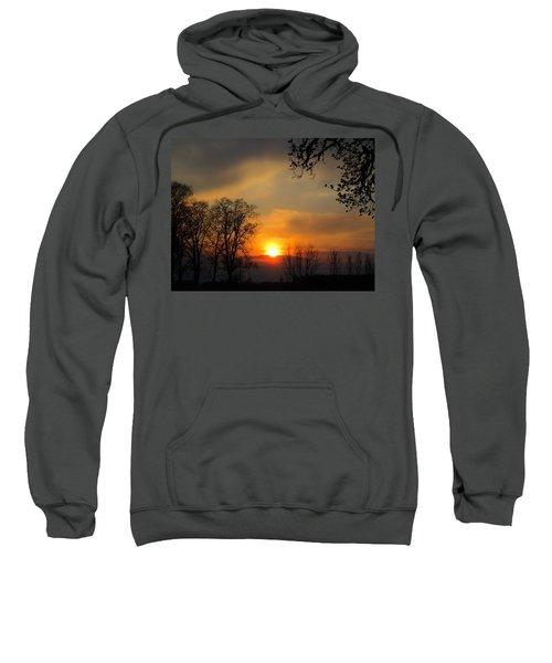 Striking Beauty Sweatshirt