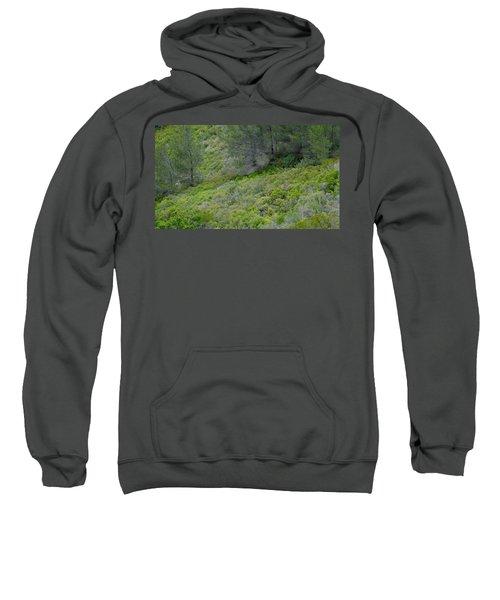 Subtle Spring Sweatshirt