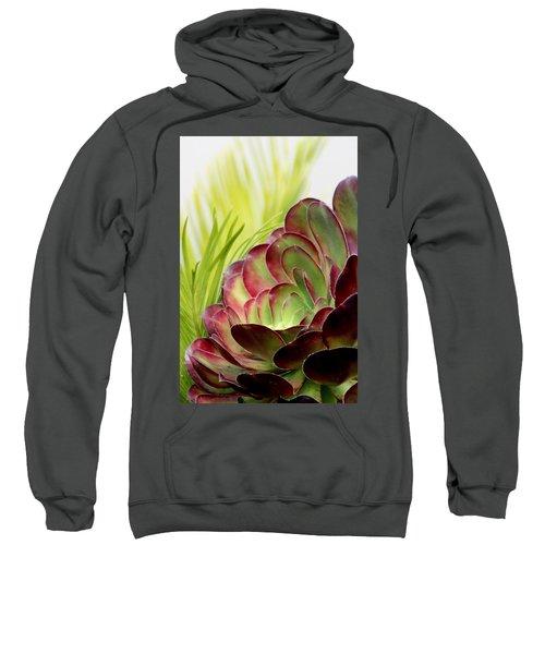 Succulent Sweatshirt