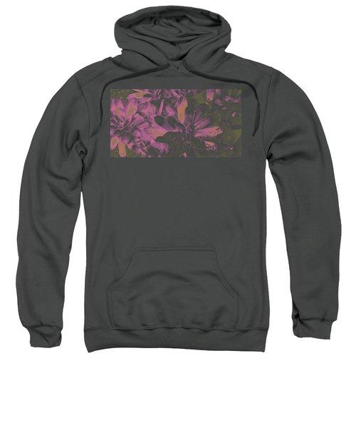 Succulents #3 Sweatshirt