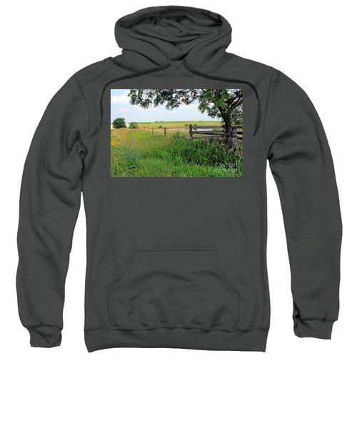 Summer Day Sweatshirt