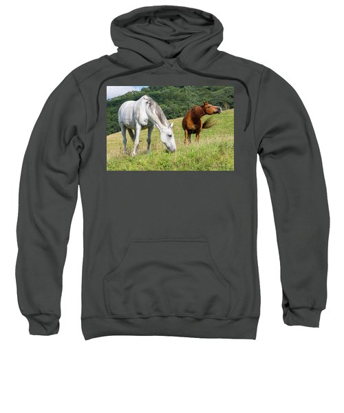 Summer Evening For Horses Sweatshirt