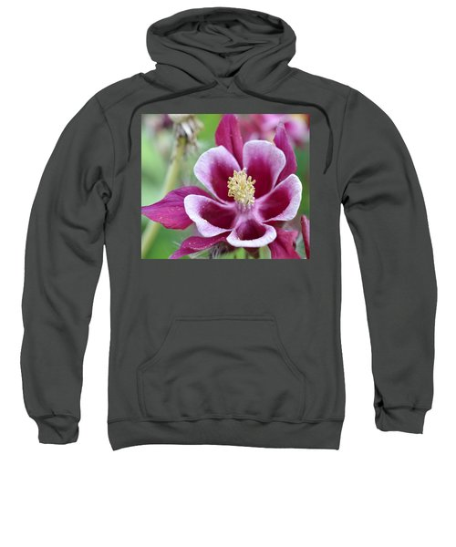Summer Flower-2 Sweatshirt