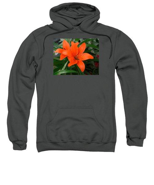 Summer Flower Sweatshirt