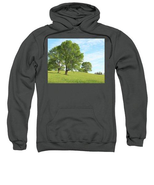 Summer Trees Sweatshirt