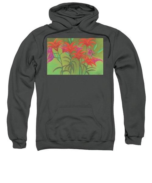 Sun Dance Sweatshirt