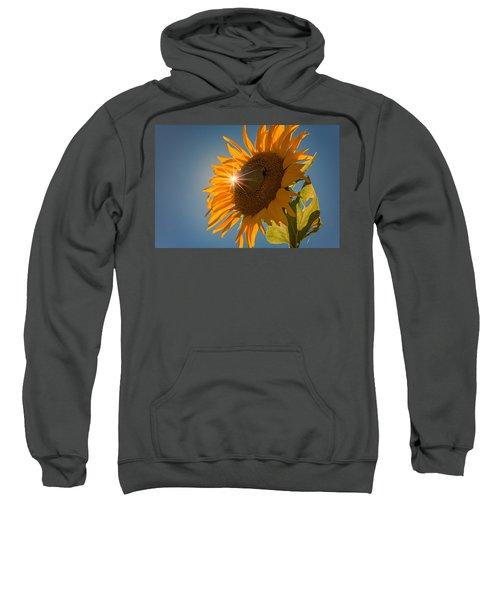 Sunburst Sweatshirt