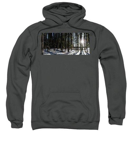 Sundial Forest Sweatshirt