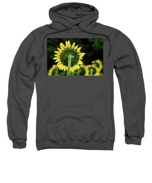 Sunflower Back Sweatshirt