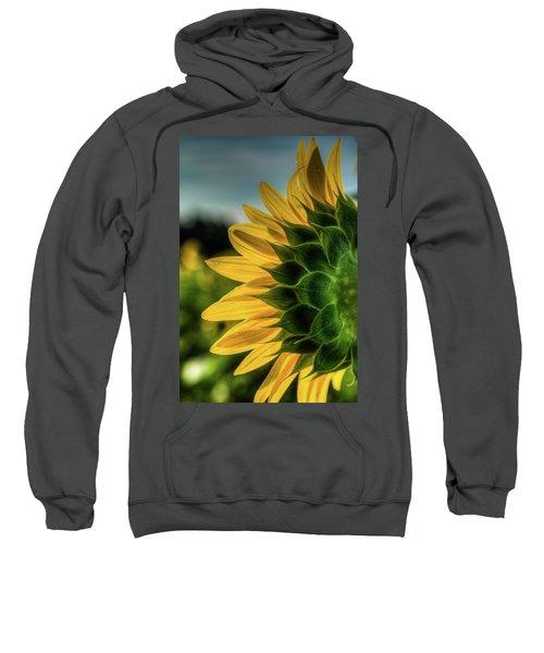 Sunflower Blooming Detailed Sweatshirt