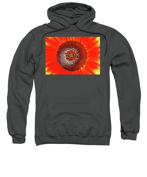 Sunflower Close Sweatshirt
