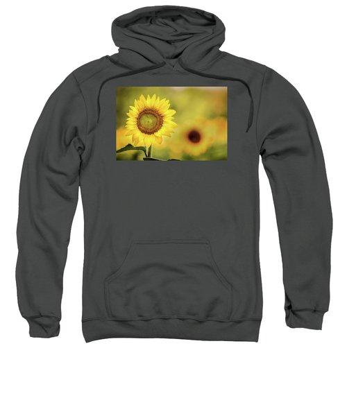 Sunflower In A Field Sweatshirt