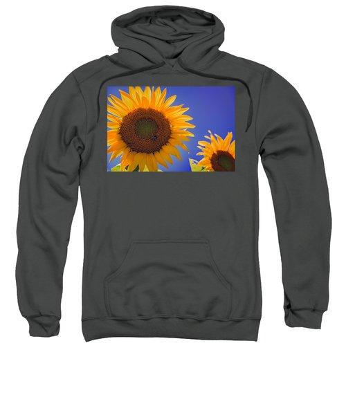 Sunflower Radiance Sweatshirt
