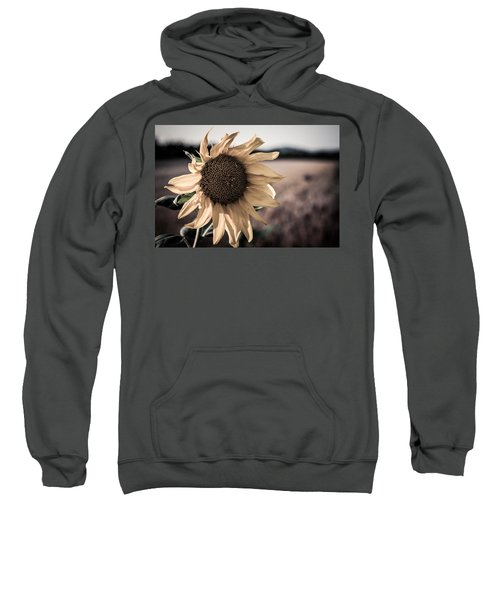 Sunflower Solitude Sweatshirt