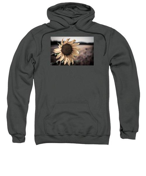 Sunflower Solitude Sweatshirt