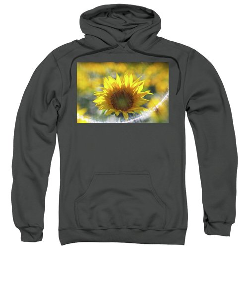 Sunflower With Lens Flare Sweatshirt