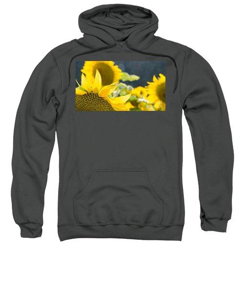 Sunflowers 14 Sweatshirt