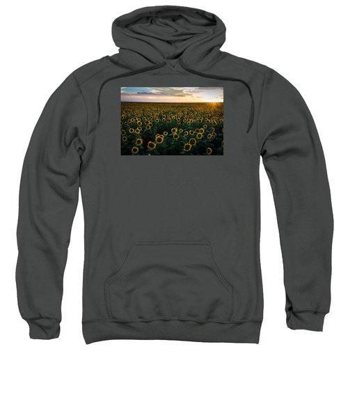 Sunflowers At Sunset Sweatshirt