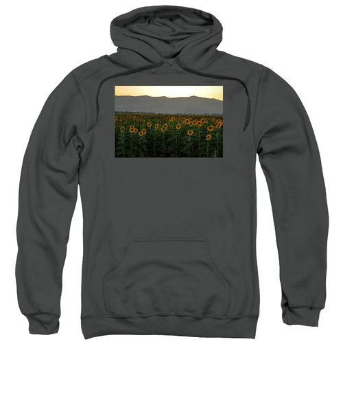 Sweatshirt featuring the photograph Sunflowers by Dubi Roman