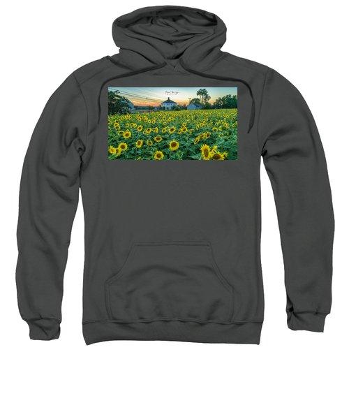 Sunflowers For Wishes  Sweatshirt