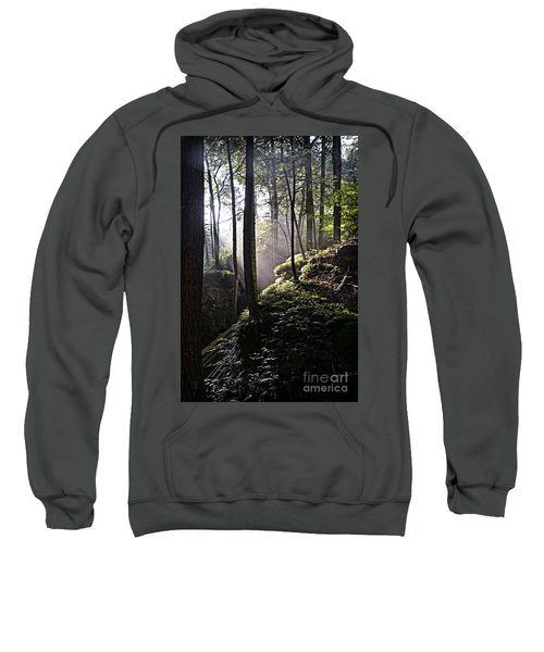 Sunlight Through Trees At Beartown State Park 3129c Sweatshirt