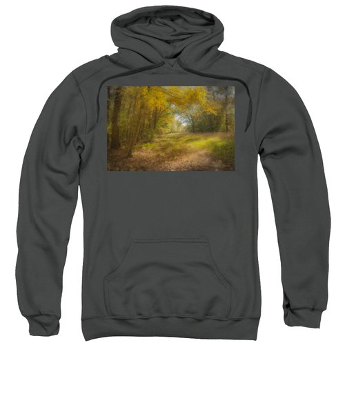 Sunlit Meadow In Borderland Sweatshirt