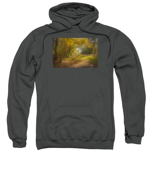 Sunlit Meadow In Borderland Sweatshirt