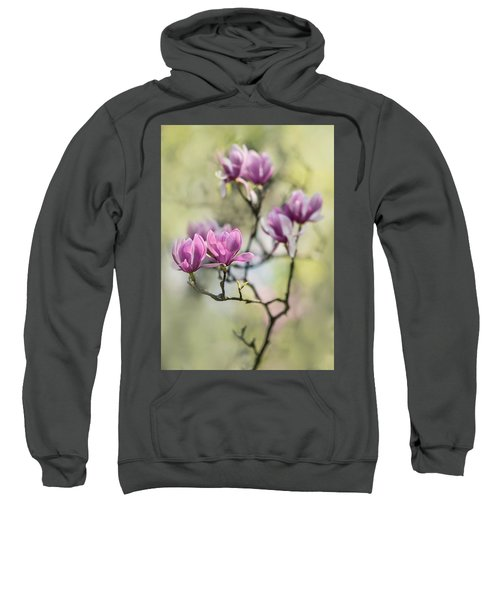 Sunny Impression With Pink Magnolias Sweatshirt