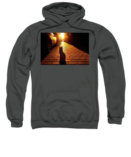 Sunset Cat Sweatshirt