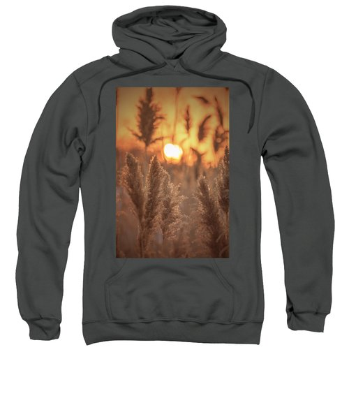 Sunset Dreams Sweatshirt