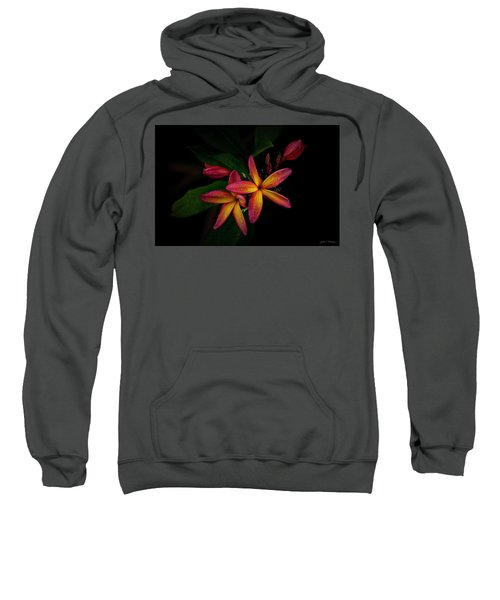 Sunset Plumerias In Bloom #2 Sweatshirt