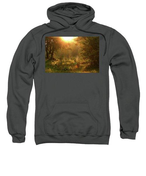 Sunshine In The Meadow Sweatshirt