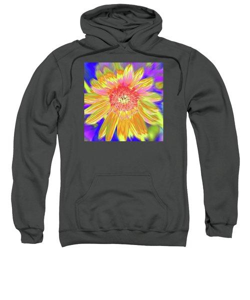 Sunsweet Sweatshirt