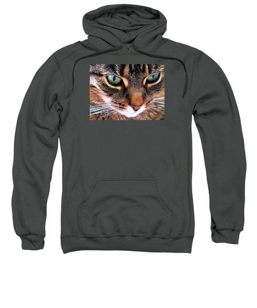 Surmising Sweatshirt