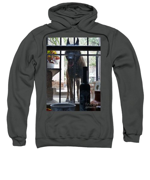 Surprise Visitor Sweatshirt