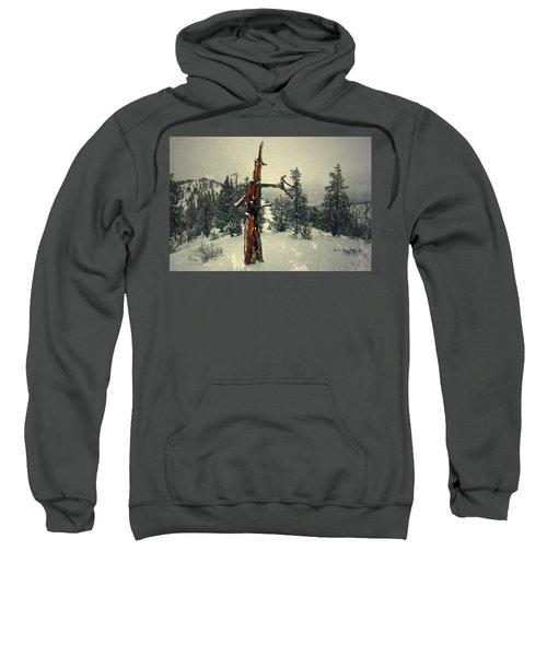 Surround Sweatshirt