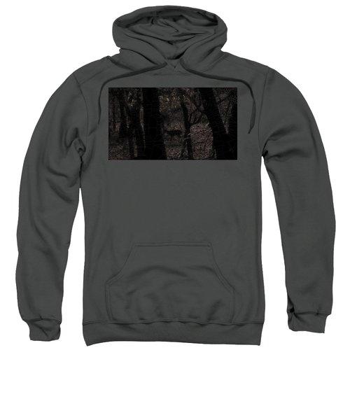 Surrounded Sweatshirt