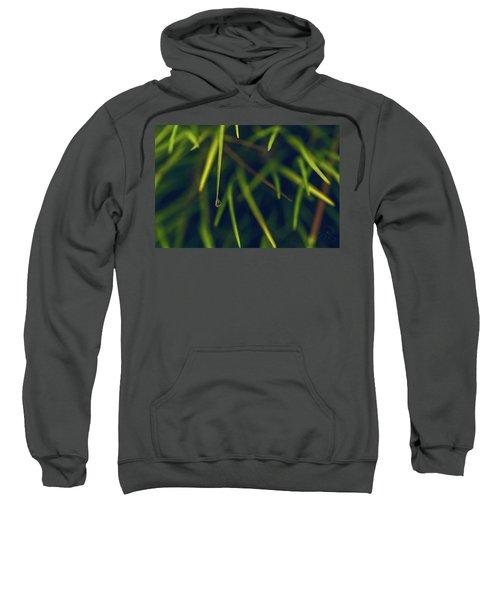 Suspended Sweatshirt