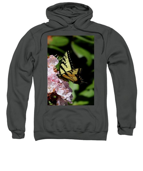 Swallow Tail On Mountain Laurel Sweatshirt