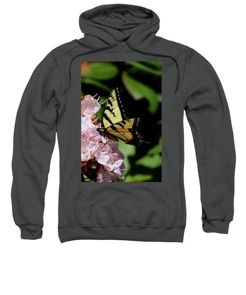 Swallow Tail On Mountain Laurel Sweatshirt