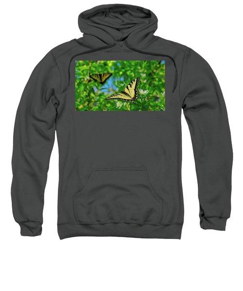 Swallowtails Sweatshirt