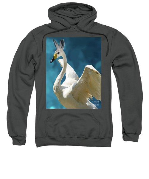 Swan Bunny Sweatshirt