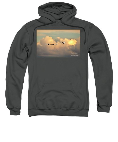 Swan Heaven Sweatshirt