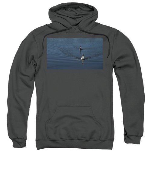 Swans On Deep Blue Sweatshirt