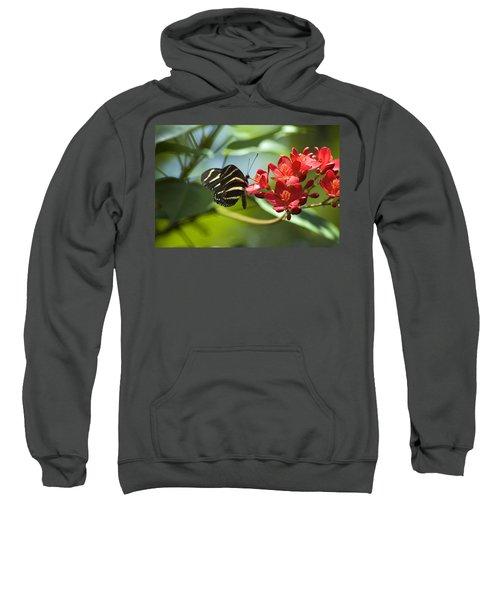 Sweet Nectar Sweatshirt
