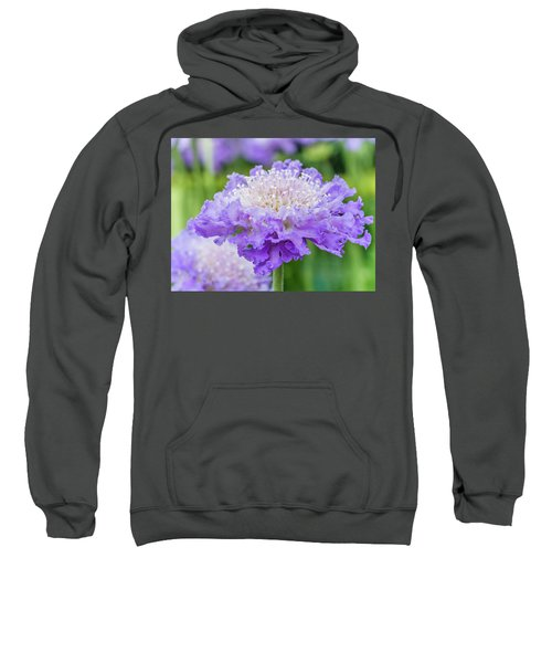 Sweet Petal Sweatshirt