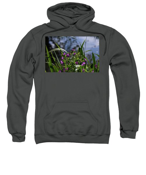 Sweet Violet Sweatshirt