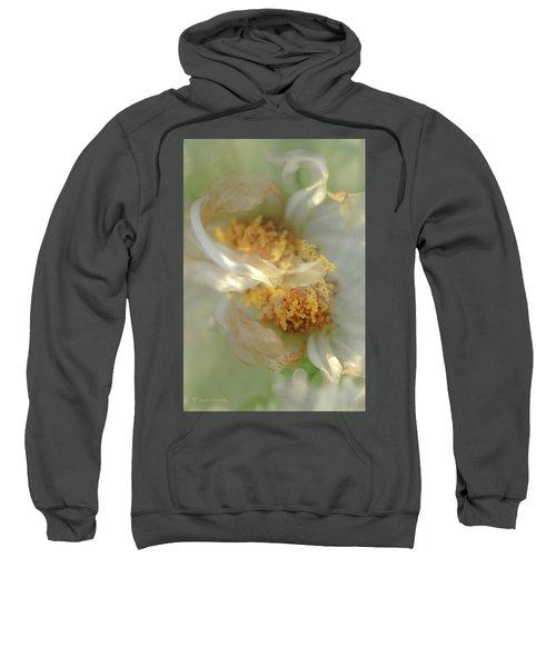 Flower Swirl.... Sweatshirt