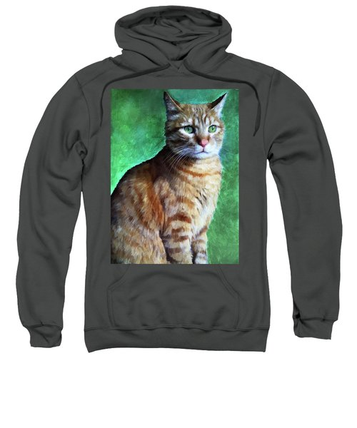 Tabby Cat Sweatshirt